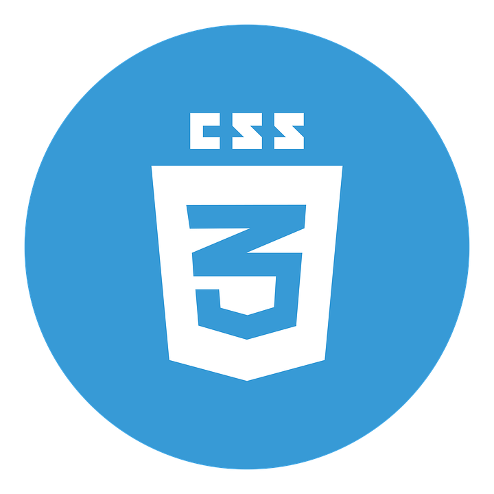 css language Training and internship IT Company Nagpur